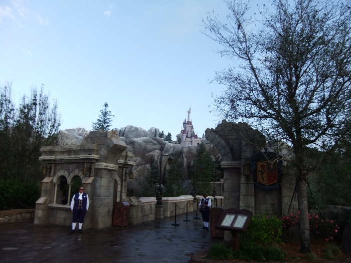 The New Fantasy Land